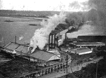 Bellingham Bay Lumber Company Mill, 1906